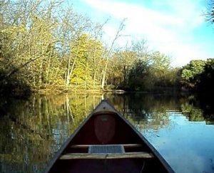 calm canoe shady shot