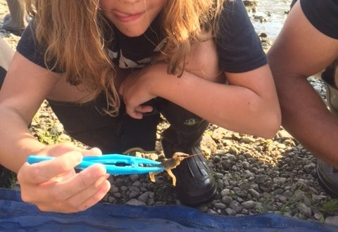 student and crayfish