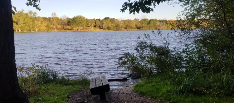 Fox River from Norris Woods by GM