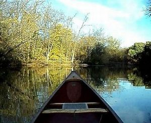 calm canoe shady shot by gm