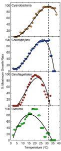 cyanobacteria graphs