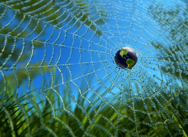 web and earth
