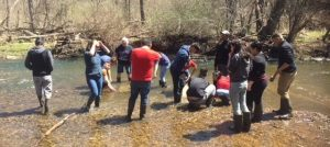 students in the stream