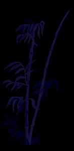 Bamboo Single Transparent 2