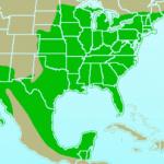 Northern_Cardinal-rangemap